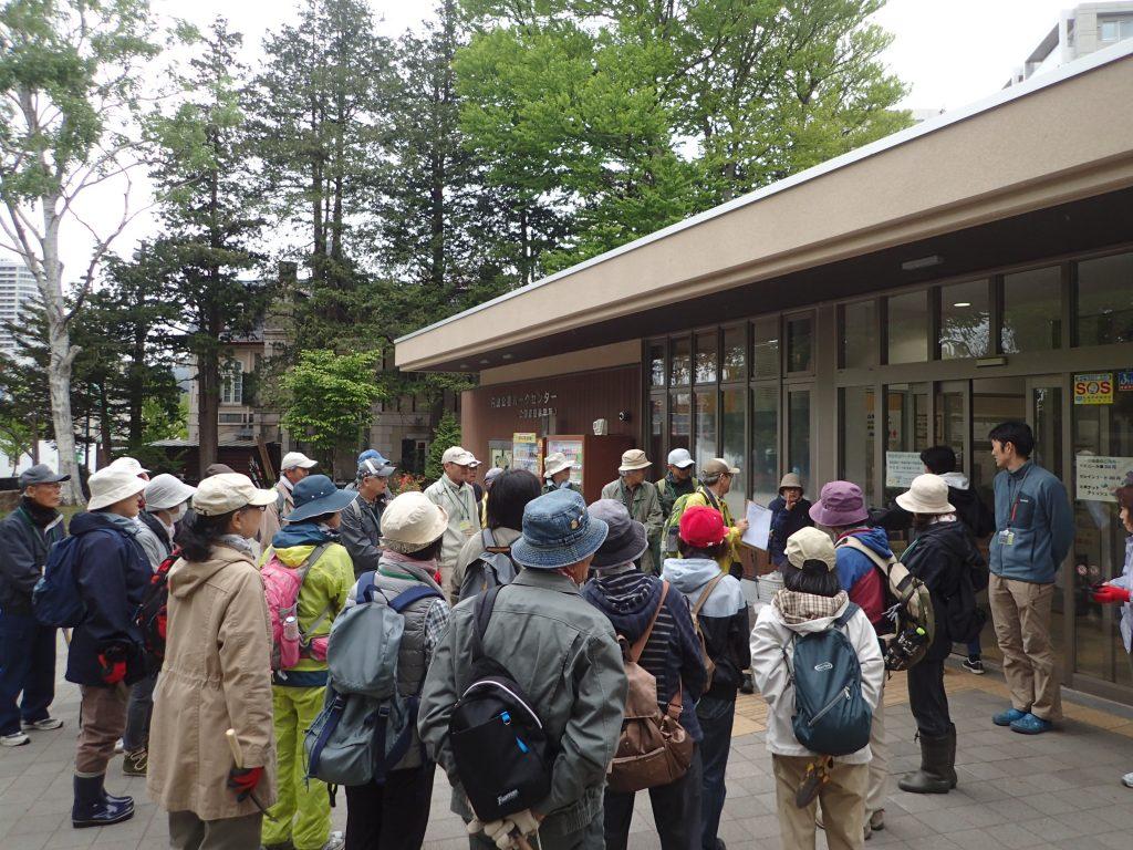 2018年5月18日北海道自然保護協会ボランティア活動1