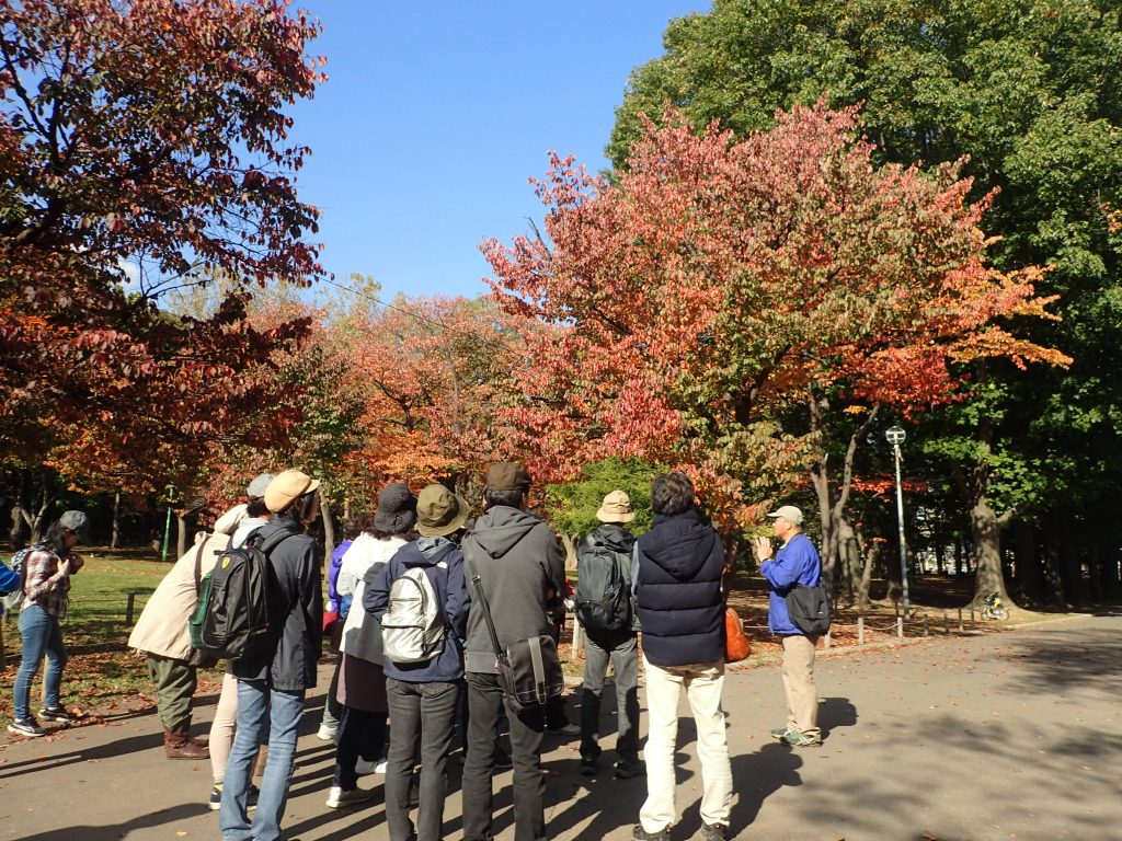 平成30年10月21日円山公園探訪ツアー2
