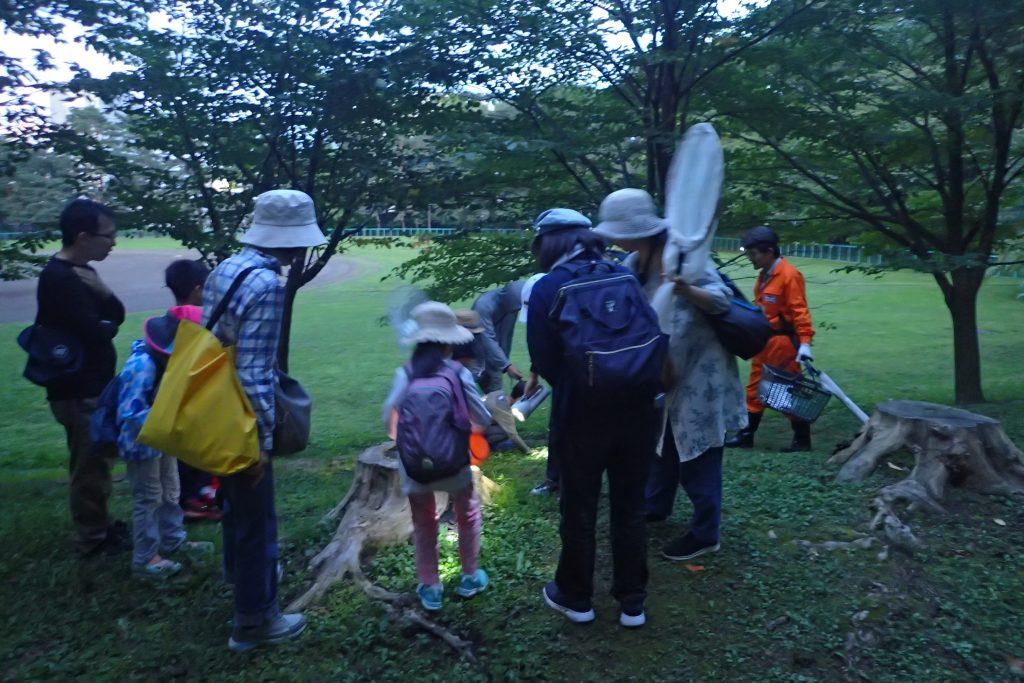 2019年7月27日円山公園探訪ツアー(夜の昆虫編)の様子1