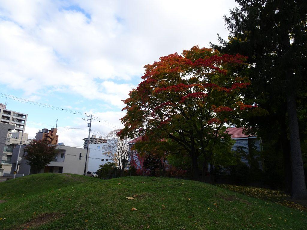 2020年10月26日紅葉の様子4